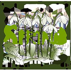 Springtime in Cromer.